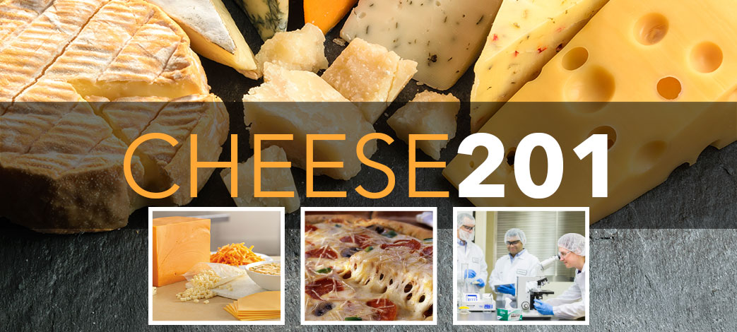 Cheese 201 Slider Image